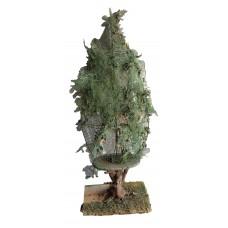 Green Tropical Tree