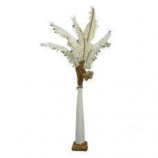 White Palm Tree